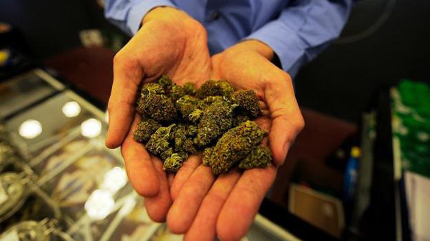 У США ПОП забезпечують безпеку виробників марихуани