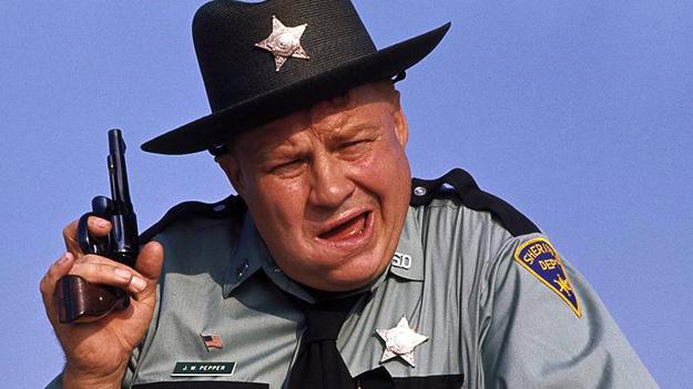 На Украине участковых заменят шерифы