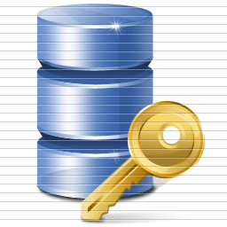 Несанкціоноване впровадження в бази даних